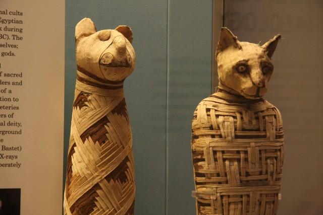 British_museum,_Egypt_mummies_of_animals_(4423733728)