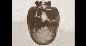 vaso di basano