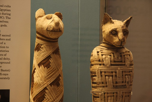 British_museum,_Egypt_mummies_of_animals_(4423733728)