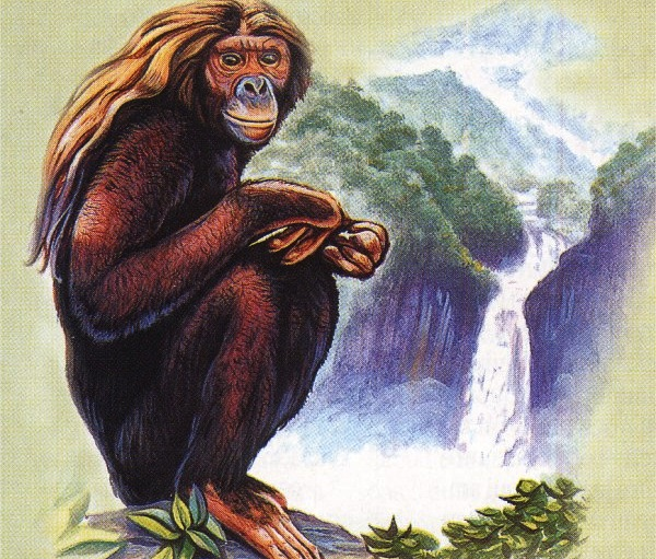 bigfoot indonesia